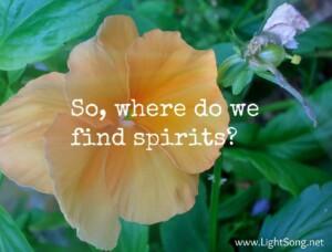 Spirits are everywhere